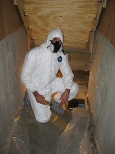Mold Remediation Project Consulting | Mold Inspection Sciences Texas